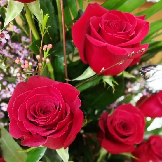 centro 14 rosas rojas de cerca