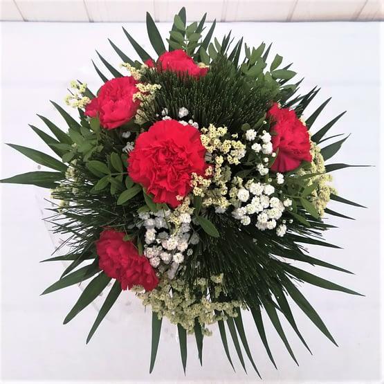 clavel rojo paniculata