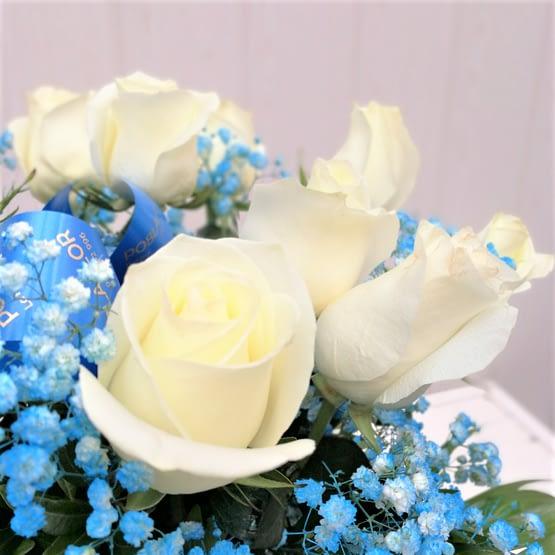 ramo de doce rosas blancas y paniculata azul de cerca