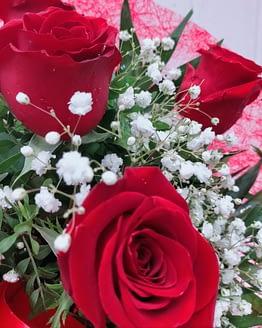 detalle rosa roja