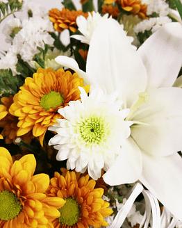 ramo margaritas naranjas y blancas y lilium de cerca