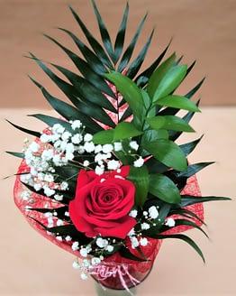 rosa roja individual