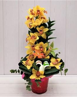 orquidea amarilla